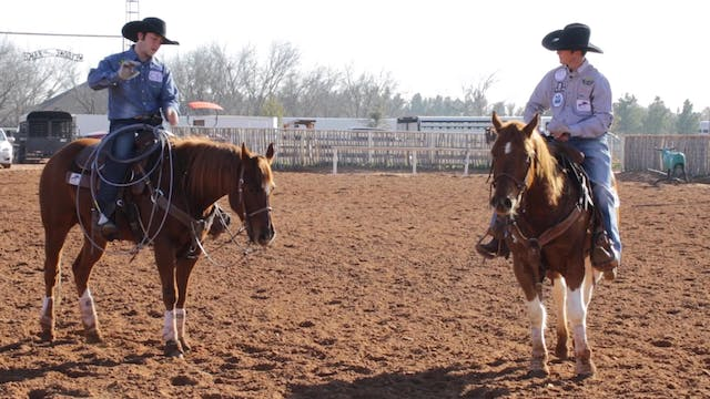 The Basics of Handling Cattle With Jo...