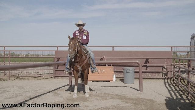 Horsemanship In The Box with Cesar De La Cruz