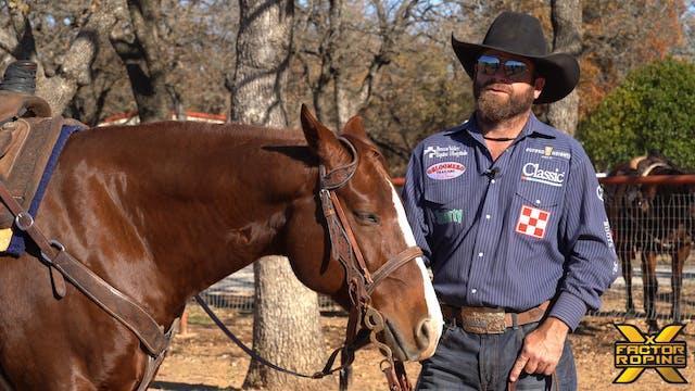 Biggest Mistake Heelers Make At Rodeo...