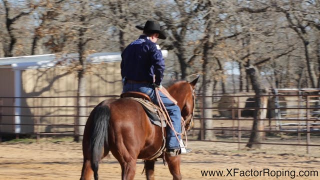Head Horse Position with Chad Masters