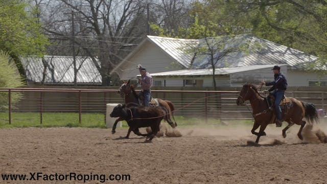 Riding Position Going Down The Arena ...