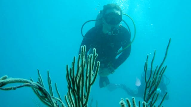 S1 Ep 8 - Ocean Exploration