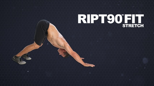 RIPT90 FIT Stretch