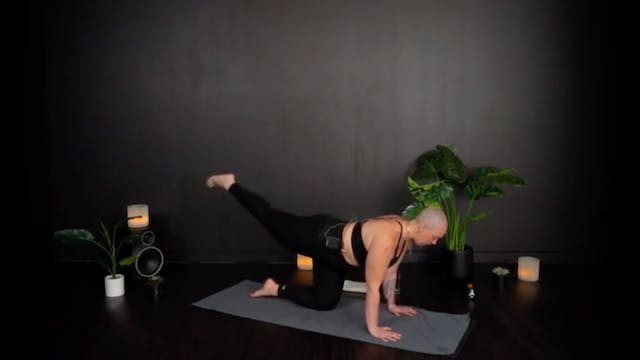 LOWER BODY WITH ELISE F