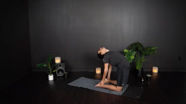 DAY 11 ENERGY SERIES | HEART CHAKRA WEFLOWHARD® + RESTORE WITH NICK N