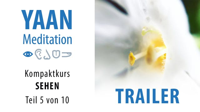SEHEN 5 Trailer