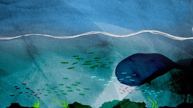 Yarn under the sea
