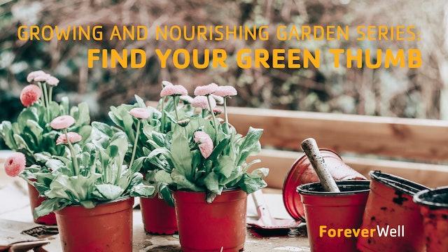 Growing & Nourishing Garden Series - Part 4 of 6
