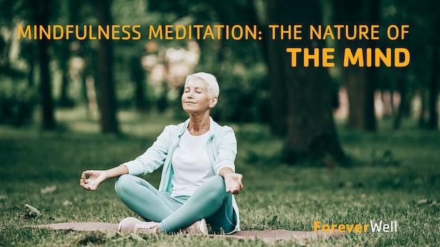 Mindfulness Meditation - The Nature of the Mind