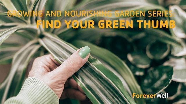 Growing and Nourishing Garden Series - Part 2 of 6