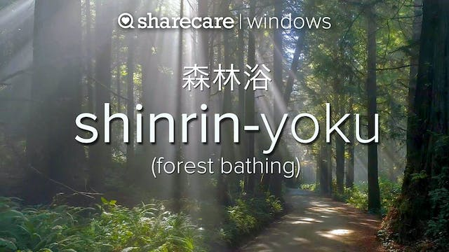 Shinrin Yoku (forest bathing) 1-hour