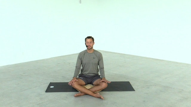 the one meditation