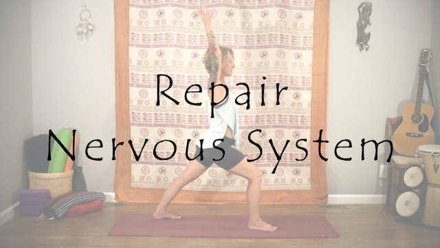 Repair the Nervous System - All Level