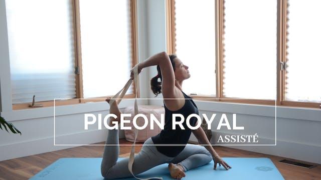 ASANA : Pigeon Royal (assisté)