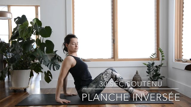PLANCHE INVERSÉE