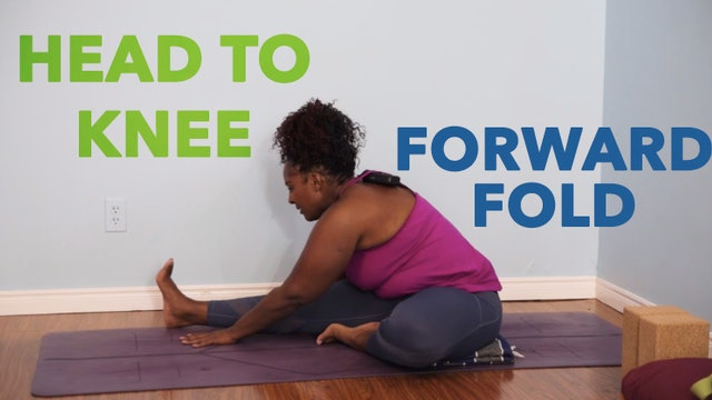Head to Knee Forward Fold / Janu Sirsasana