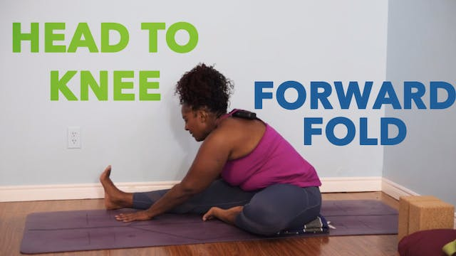 Head to Knee Forward Fold / Janu Sirs...