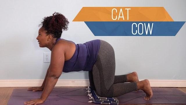 Cat-Cow / Marjariasana-Bitilasana