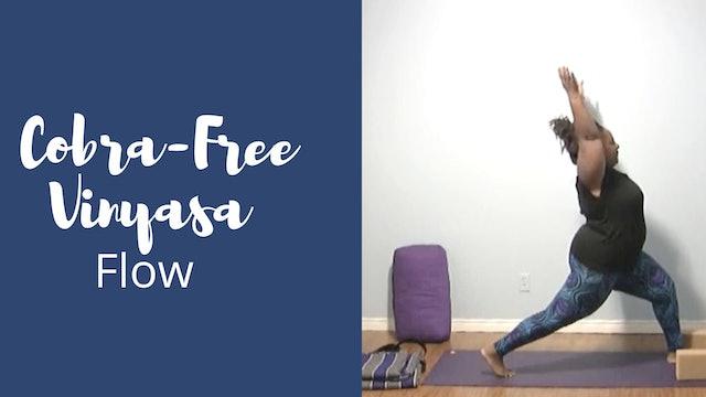 Cobra-Free Vinyasa Flow