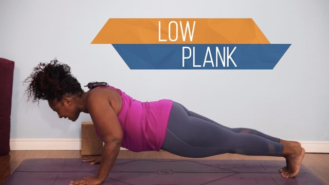 Low Plank Pose / Chaturanga Dandasana