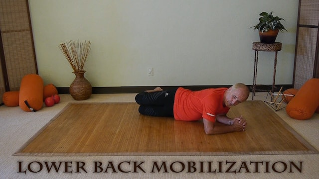 Kiss Your Knee: Great Quad Stretch & Low Back Stretch with Erhard Rohrmuller