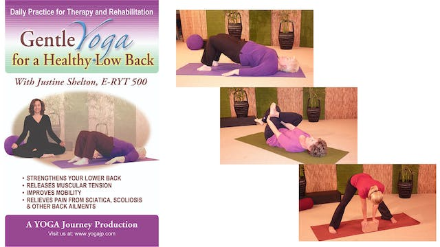 Gentle Yoga for a Healthy Low Back with Justine Shelton