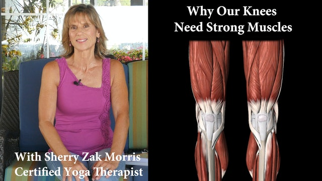 How Yoga Strengthens your Knees and Legs with Sherry Zak Morris, C-IAYT