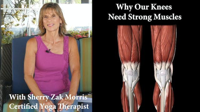 How Yoga Strengthens your Knees and L...