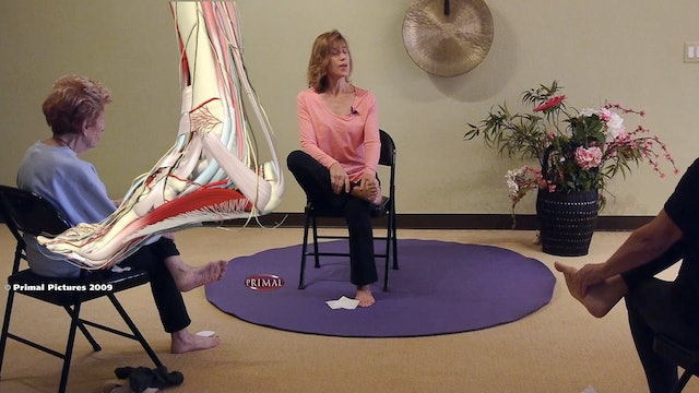 The Difference between Arch Supports and Yoga - Take your shoes off and find out! with Sherry Zak Morris