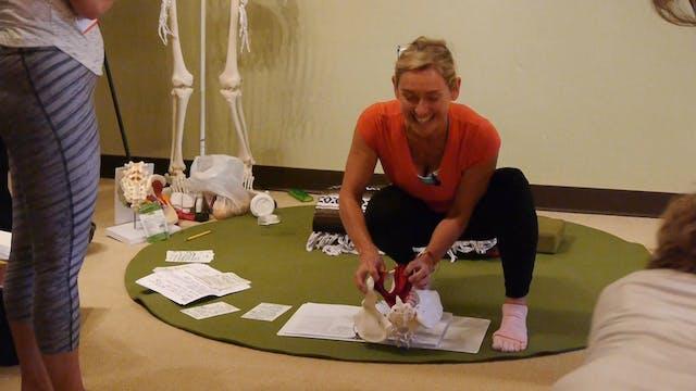 Online Course: Pelvic Floor Health in...