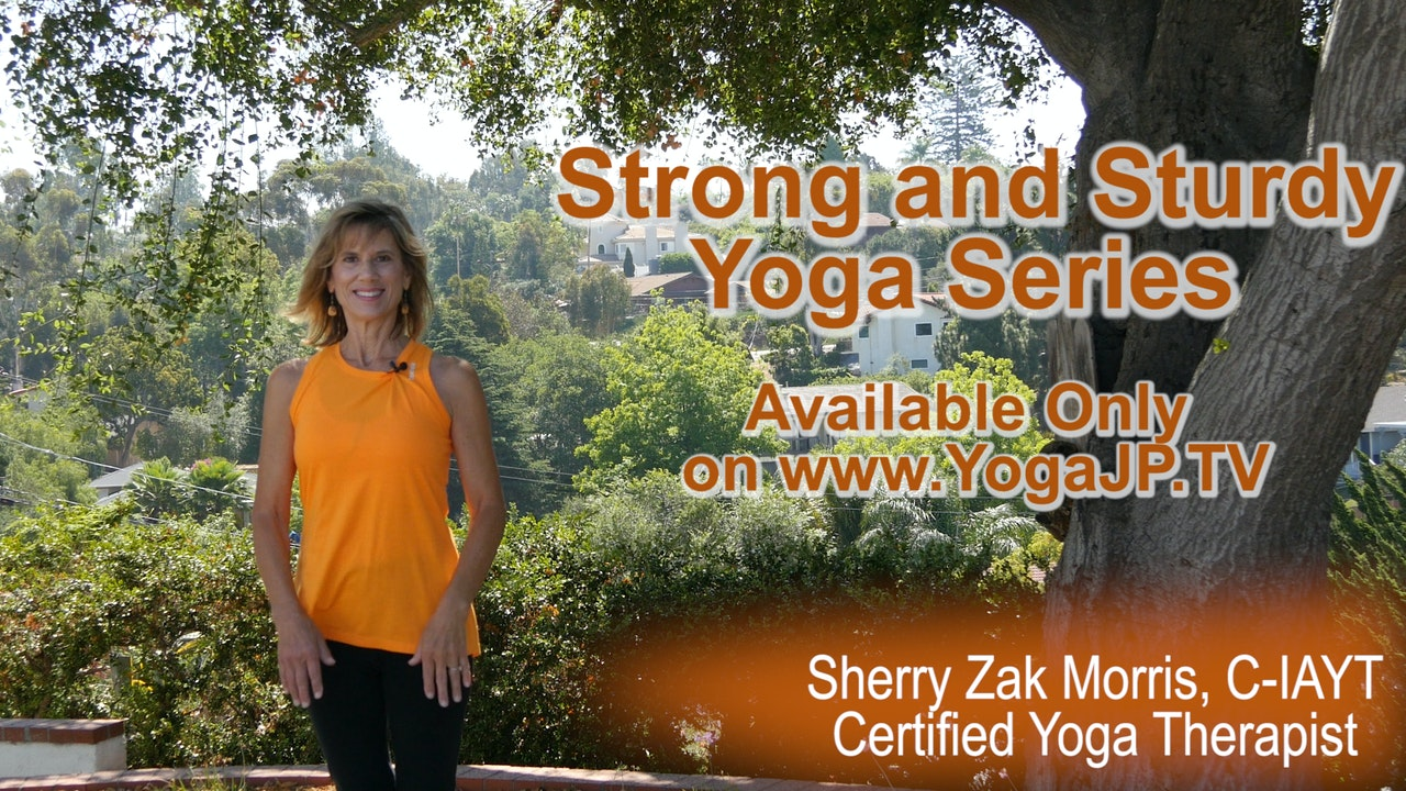 Strong & Sturdy: Let's Get to Work!  Gentle Yoga Series with Sherry