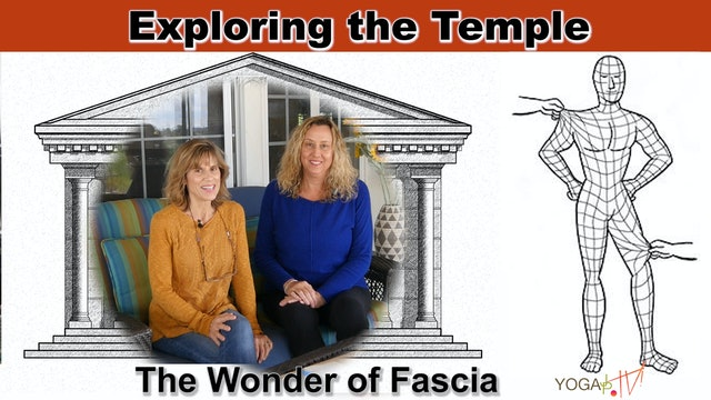 The Wonder of Fascia: Our Bodies Uncovered with Sherry & Justine
