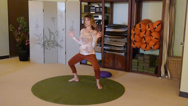 (1 Hr) Sunflower Flow for Balance and Strength with Sherry Zak Morris