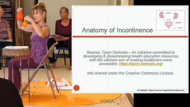 Part 2: Anatomy of Incontinence - What kind do you have? with Sherry Zak Morris