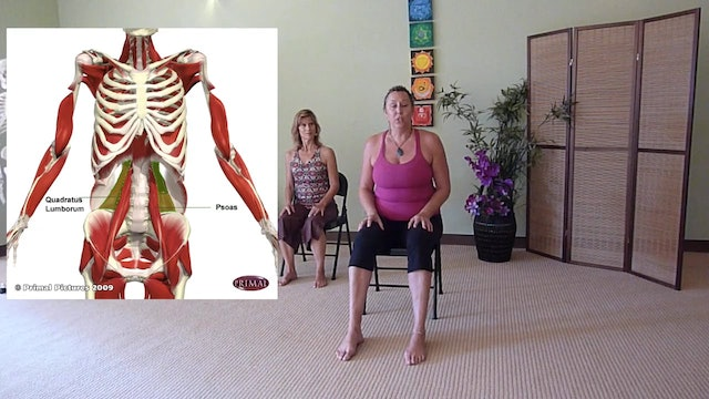 Stretches for Low Back Pain - Do them Right Now! with Justine Shelton