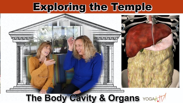 The Body Cavity and Our Organs with Sherry and Justine