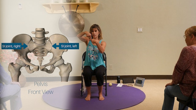 Can you Move your Sits Bones and Why do We Care? with Sherry Zak Morris