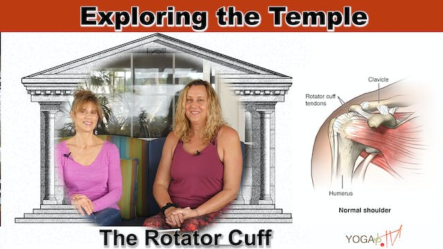 The Rotator Cuff and its Associated Injuries with Sherry & Justine