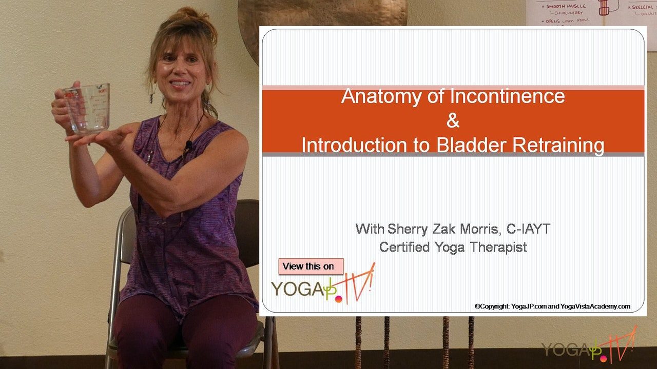 Anatomy of Incontinence and Bladder Retraining with Sherry Zak Morris