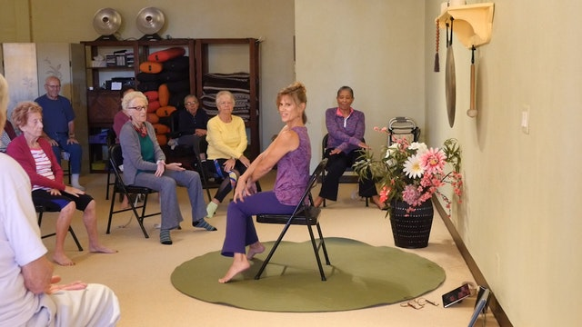 """(1 Hr) Simple Things to Make You and Your Body """"Troll"""" Happy! Energizing Chair Yoga Class with Sherry Zak Morris"""