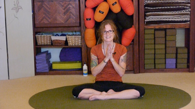 (1 Hr) Gentle Somatic Yoga with Ann Melin