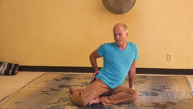Shorter Somatic Yoga Classes (Under 1-Hr)