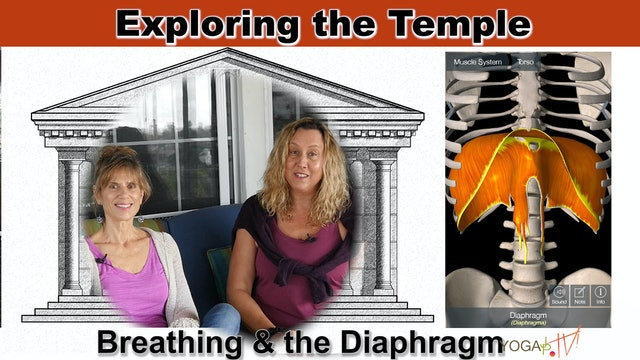 The Diaphragm and our Breathing with Sherry & Justine
