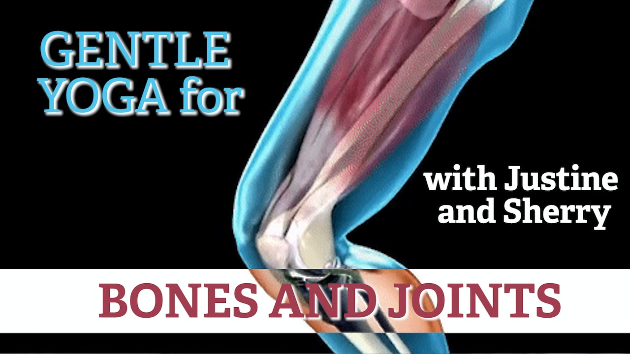 Bones and Joints: A Discussion with Sherry and Justine