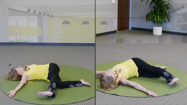(30-Min) Full Body Stretch to do Every Day! The Flamingo with Sherry Zak Morris