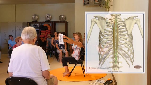 How to Get an Erect Spine - Simple an...