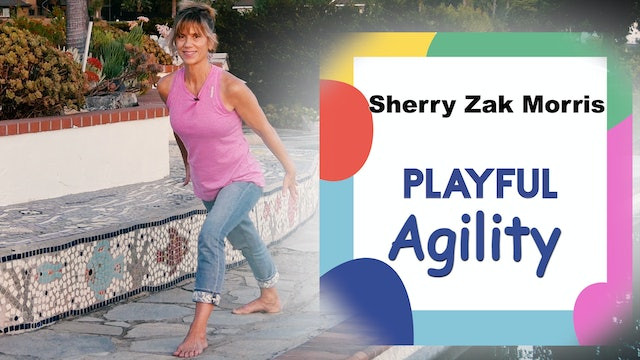 (20-min) Playful Agility for the Fun of It with Sherry Zak Morris