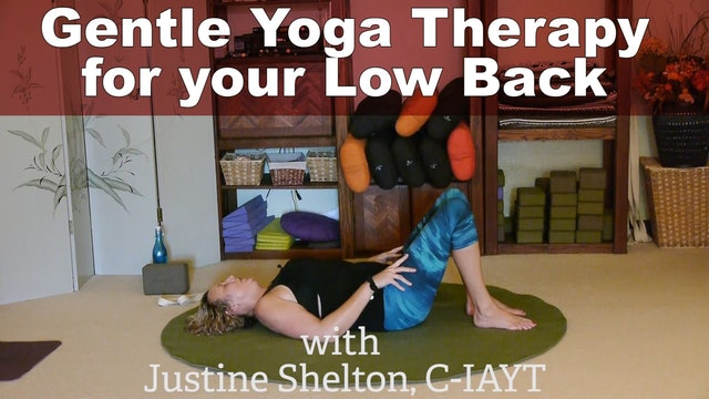 Strengthen and Stabilize your Low Back with Justine Shelton
