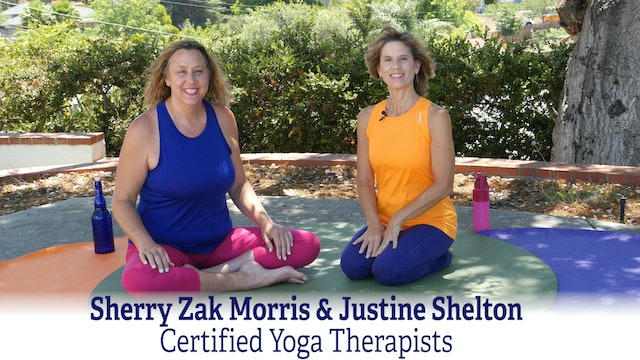 An Osteoarthritis Discussion with Yoga Therapists with Sherry & Justine