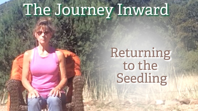 The Journey Inward: Return to the Seedling with Sherry